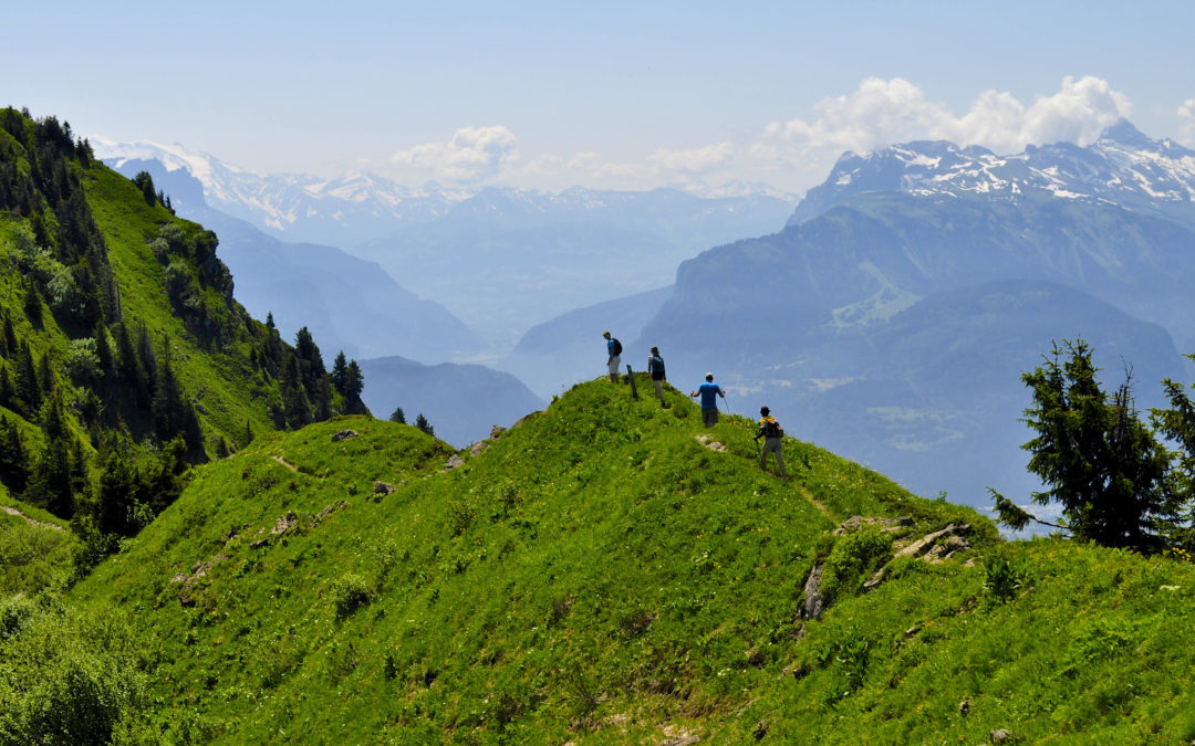 Hiking holidays in the Alps