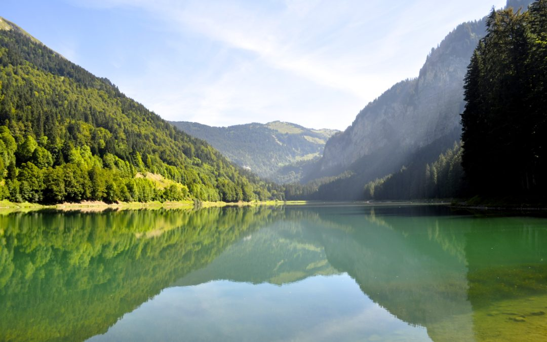 Summer Alpine Photography